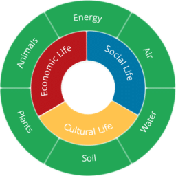 SustainabilityFlower